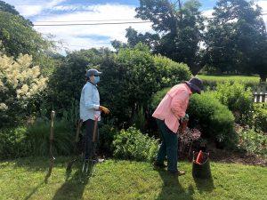 Grounds Volunteer Open Day